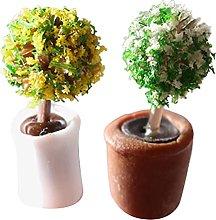 Pianta in miniatura in vaso, 2 pezzi casa delle