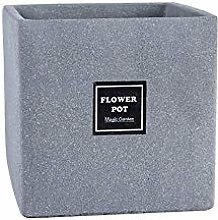 Pianta pianta flower flower pot terrazzo quadrato