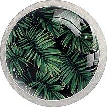 Pianta verde tropicale 35mm