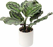 Piante artificiali da 31 cm, piante finte da