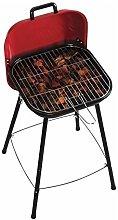 Picnic Barbecue Grill Valigetta, Multicolore, 1Â