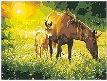 pittura con numeri cavallo animale per adulti