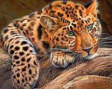 Pittura Diamanti 5D Leopardo sdraiato Kit per