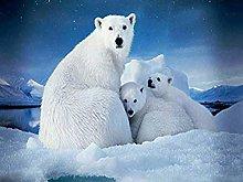 Pittura Diamanti 5D Orso Polare Kit per Pittura