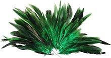 piume - SODIAL(R) Circa. Verde piuma di cazzo 50pz