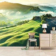 QMWZZV Murale Sfondo Personalizzato 3D Paesaggio