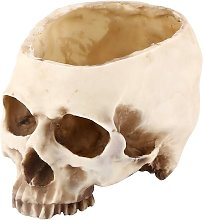Resina cranio testa contenitore design vaso di