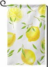 Rxi9s fresco limone esterno casa luminosa giardino