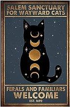 Salem Sanctuary for Wayward Cats Ferals and