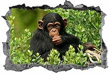 Scimmia, adesivo, arte della parete, decalcomania,