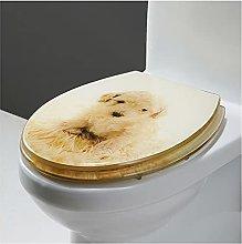 Sedile WC in Resina Ammortizzato Di Alta Qualità