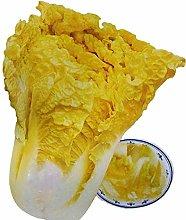 Semi di cavolo giallo giardino balcone ortaggi in