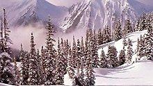 Set da ricamo a punto croce-Winter Mountain Snow