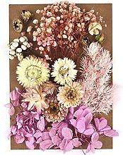Stampo per fiori secchi fai da te per realizzare
