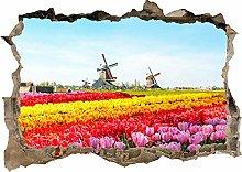 Sticker da muro - Bellissimi fiori di tulipani 3d