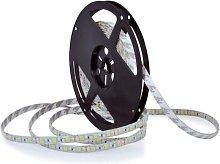 Striscia LED 5m 45W/12V IP65 6000K