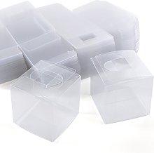 SurePromise Scatola Trasparente PVC,100 Pezzi