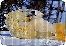 Tappetini da bagno da bagno, Orso Polar Mother