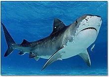 Tappeto da Soggiorno squalo 80X160 CM Tappeto a