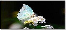 Tappeto Passatoia Cucina 40cm X 100cm Farfalla