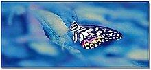 Tappeto Passatoia farfalla blu 50cm X 160cm