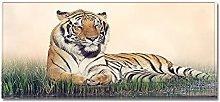 Tappeto Passatoia tigre 60cm X 180cm Corridoio