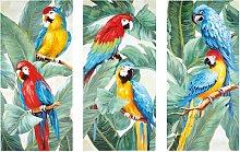 Trittico tele pappagalli, 270x190 cm