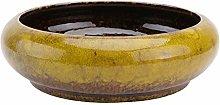 UPKOCH Vaso di Fiori in Ceramica Rotondo Vaso