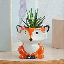 Vaso da fiori in ceramica, vaso per piante grasse,