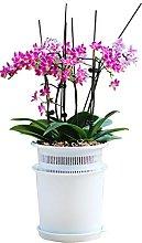 Vaso di fiori Contenitore for fioriera in plastica