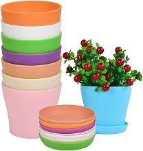 Vaso di fiori di plastica di 8pcs con piattino,