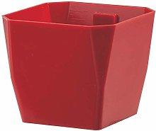 Vaso Magnetico MAGNETIKA Cubic Rosso 7CM Giardino