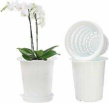 Vaso per orchidea in plastica, 12 cm, con fori e