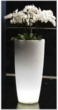 Vaso tondo luminoso per fiori ghiaccio lamp design