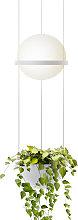 Vibia Palma 3724 sospensione, vaso piante, bianco