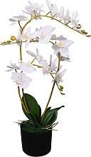 vidaXL Orchidea Artificiale con Vaso 65 cm Bianca