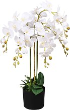 vidaXL Orchidea Artificiale con Vaso 75 cm Bianca