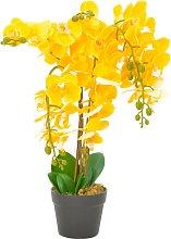 vidaXL Orchidea Artificiale con Vaso Gialla 60 cm