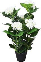 vidaXL Ortensia Pianta Artificiale con Vaso 60 cm