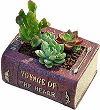 VOSAREA Resina Succulenta Fioriera Design Libro