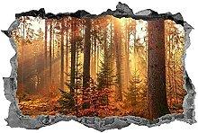 Woodland, adesivo, arte della parete, alberi,