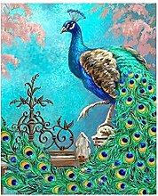 XHHZ Dipingi con i Numeri Bambini Pavone Uccello