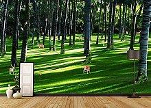 XHXI Woods Meadow Sunshine3D Carta da parati Hd