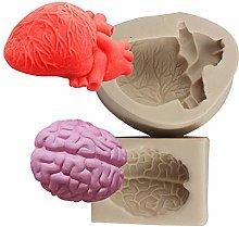 XLZSP Stampi in silicone per organi umani, in 3D