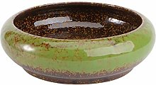 Yardwe Fioriera Succulenta Vaso di Terracotta in