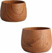 YARNOW 2Pcs di Ceramica Succulente Planter Vaso di