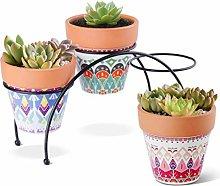 YARNOW 3 Pezzi Vasi per Fioriera Succulente in