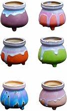 YARNOW 6 Pz Mini Ceramica Piante Grasse Vaso