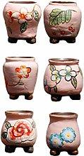 YARNOW 6Pcs Mini Ceramica Piante Grasse Fioriera