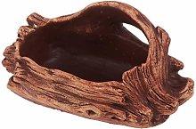 Yarnow - Vaso per Piante grasse e Cactus, per
